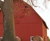 I Heart Barns / by Sarah Merrill