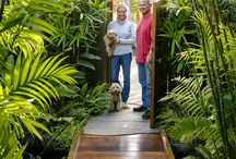 Tropical Garden / Creating even the smallest of tropical gardens gives the feeling of relaxation and vacation