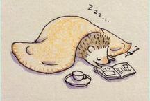 Audrey's hedgehogs