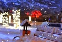 glittering winter / winter , profit,merry christmas,winter photography,snow