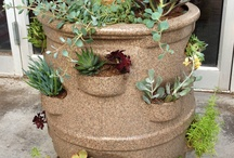 My Little Garden Barrels / HOOD'S West Alton, Missouri just received ten My Little Garden Barrels.  Come to the HOOD'S Store to purchase this new inventory.  Like us on the social media sites below for up-to-date inventory.  The HOOD'S Store is open and did not get flooded.