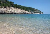 Pugnochiuso, Perla del Mediterraneo