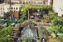 iç bahçe