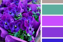 Colourways