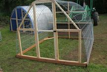 Chicken Coops and Greenhouses