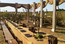 Roman or Greek themed party