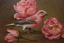 Ptaki / Ptaki