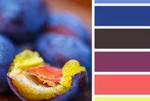 barvičky-inspirace