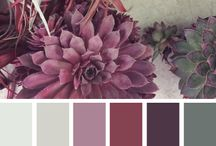 Colour of 2015 | Marsala