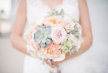 Wedding :: Peach & Pastels / Castle Hill (L & P)