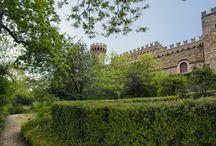 Tuscany / by Debi Koscielny