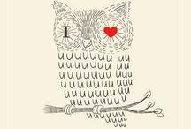 (⊙o⊙) Owl (⊙o⊙)