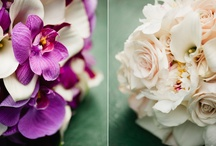 Wedding Flowers / wedding flowers, bouquet, boutonniere / by Kate Connolly
