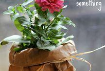 confezionare piante regalo