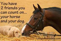 Lovak és barátaik