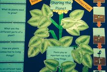 PYP Sharing Planet Plants