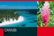 Caraibi / Colorate immersioni subacquee, allegria contagiosa, e ritmi vibranti...