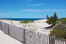 Beaches / by Christine Fresh