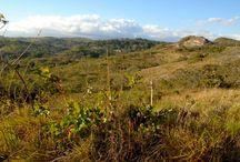 Small 12 acre Guanacaste farm with Mountain Views