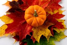 Fall Crafts / by Deb Albright