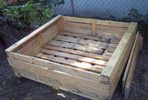Container gardening / Raised garden beds