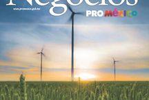Negocios ProMéxico / ¿Ya leíste nuestra Revista Negocios? Todo lo que necesitas saber de los sectores e industrias de comercio en México y el mundo. http://www.promexico.gob.mx/es/mx/revista-negocios