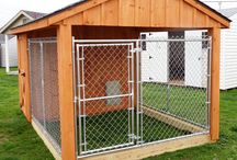 Cage dog house