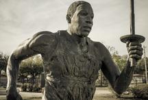 US Olympic Athletes / by Jordan Jaquay