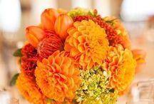 Flower Arrangements / by Meleny Peña