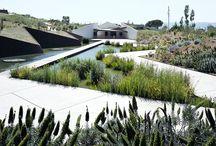 Public spaces and landscapes