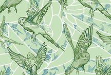 budgies and bird prints