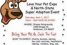 2017 News from Love Your Pet Expo / Everything that's going on with us this year.