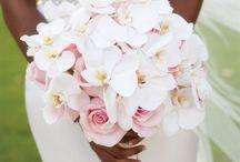 Wedding Flowers / by Sarah Densman Zwickey