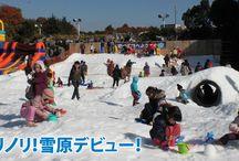 Winter 2016 / 7 Saitama