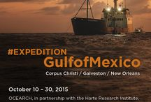 Expedition Gulf of Mexico / by OCEARCH