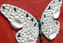 borboleta de conchas
