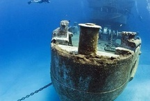 Can't believe what's under the Sea! / by ᗩɱaɳɖa ❀ Ɓỉsɧσƥ