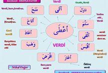Arapça dil bilgisi