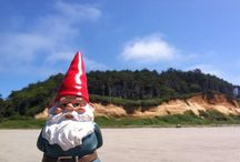 Out Of GNOMEwhere!!  / A Gnomebal Collection / by LaDonna Parker-Clark