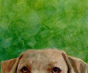 Dog Art / by Fernanda Oravec