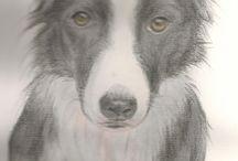 retrato de pet personalizado / aquarela e lápis de cor sobre papel (25cm x35cm)
