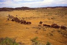 Cowboy poetry / Cowboy poetry