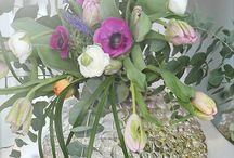 Växter, blommor och sånt