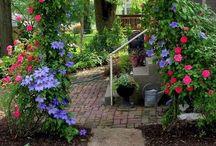 Garden- Honeymoon