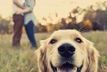 Couple photo with dog