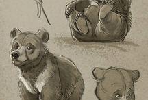 Bears (draw ideas)