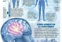 aumentar la serotonina