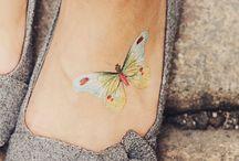 tato o mariposa