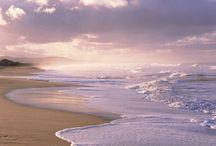 Favorite Beaches / by Joy Hearron