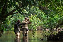 Tanzania / Luxury Safaris in Tanzania | Ker Downey